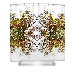 Lace Shower Curtain by Debra and Dave Vanderlaan