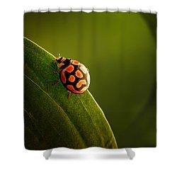 Ladybug  On Green Leaf Shower Curtain by Johan Swanepoel