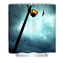 Lamps With Birds Shower Curtain by Meirion Matthias