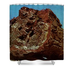Large Petrified Log  Shower Curtain by Ruth  Housley
