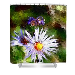 Last Rose Of Summer Shower Curtain by David Lane