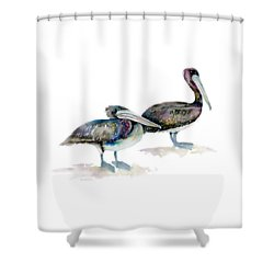 Laurel And Hardy, Brown Pelicans Shower Curtain by Amy Kirkpatrick