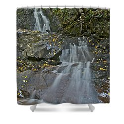 Laurel Falls Shower Curtain by Michael Peychich