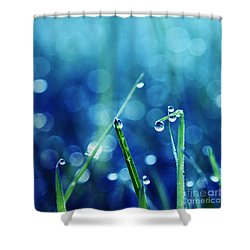 Le Reveil - S01a Shower Curtain by Variance Collections