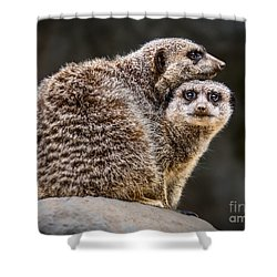 Lean On Me Shower Curtain by Jamie Pham