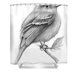 Least Flycatcher Shower Curtain by Greg Joens