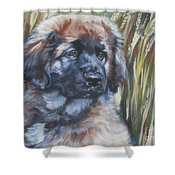 Leonberger Pup Shower Curtain by Lee Ann Shepard