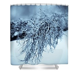 Shower Curtain featuring the photograph Lichen 1207 Nature Abstract by Frank Tschakert