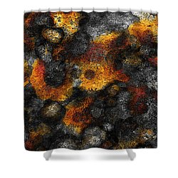 Shower Curtain featuring the painting Lichen by Frank Tschakert