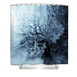 Shower Curtain featuring the photograph Lichen Macro 1206 Nature Abstract by Frank Tschakert