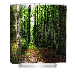 Light Through The Trees Shower Curtain by Meirion Matthias