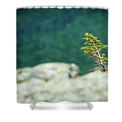Lonely Shower Curtain by Sebastian Musial