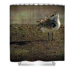 Looking Pretty Shower Curtain by Marvin Spates