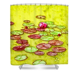 Lotus Flower On The Water 2 Shower Curtain by Lanjee Chee