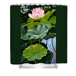 Lotus Rising Shower Curtain by John Lautermilch