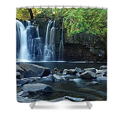 Lower Johnson Falls Shower Curtain by Larry Ricker