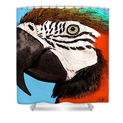 Macaw Bird - Rain Forest Royalty Shower Curtain by Sharon Cummings