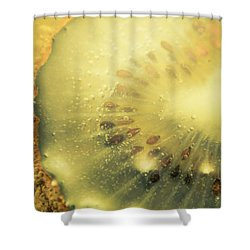 Macro Shot Of Submerged Kiwi Fruit Shower Curtain by Jorgo Photography - Wall Art Gallery