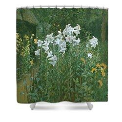 Madonna Lilies In A Garden Shower Curtain by Walter Crane