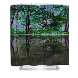 Magical Forest Shower Curtain by Karol Livote