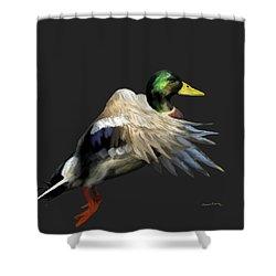 Mallard Freehand 1 Shower Curtain by Ernie Echols