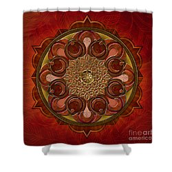 Mandala Flames Shower Curtain by Bedros Awak