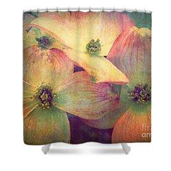 May 10 2010 Shower Curtain by Tara Turner