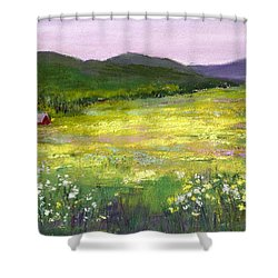 Meadow Of Flowers Shower Curtain by David Patterson