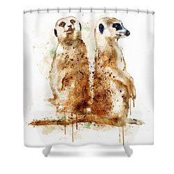 Meerkats Shower Curtain by Marian Voicu