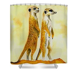 Meerkats Shower Curtain by Michael Vigliotti