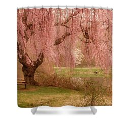 Memories - Holmdel Park Shower Curtain by Angie Tirado