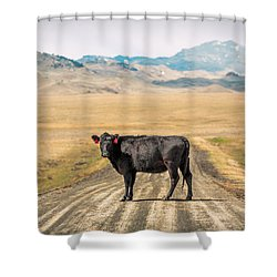 Middle Of The Road Shower Curtain by Todd Klassy