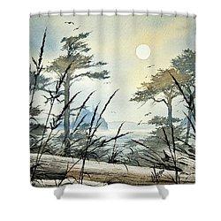 Misty Island Dawn Shower Curtain by James Williamson