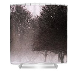 Misty Shower Curtain by Linda Knorr Shafer