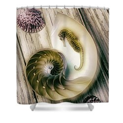 Moody Seahorse Shower Curtain by Garry Gay