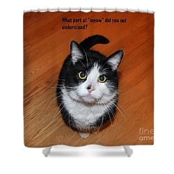 More Words From  Teddy The Ninja Cat Shower Curtain by Reb Frost