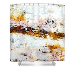 Shower Curtain featuring the painting Morning Light by Frank Tschakert