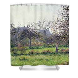 Morning Sun Shower Curtain by Camille Pissarro