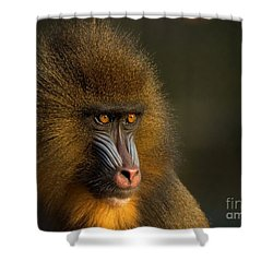 Mother's Finest Shower Curtain by Jacky Gerritsen