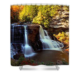Motion Shower Curtain by Mitch Cat