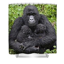 Mountain Gorilla Mother Holding 5 Month Shower Curtain by Suzi Eszterhas