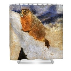 Mountains To Climb Shower Curtain by Donna Kennedy