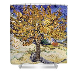Mulberry Tree Shower Curtain by Vincent Van Gogh