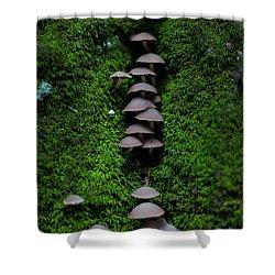 Mushroom Fall Shower Curtain by Jeff Klingler