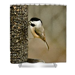 My Favorite Perch Shower Curtain by Lana Trussell