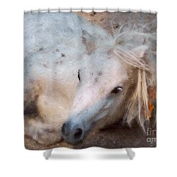 My Little Horse Shower Curtain by Angela Doelling AD DESIGN Photo and PhotoArt