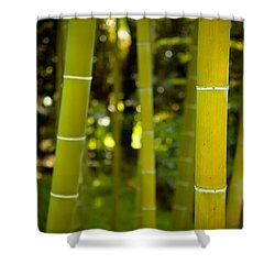 Mystical Bamboo Shower Curtain by Sebastian Musial