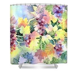 Napa Valley Morning 2 Shower Curtain by Deborah Ronglien