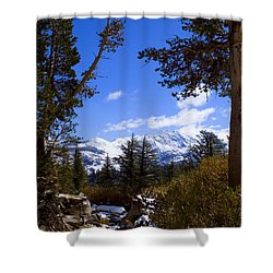 Naturally Framed Shower Curtain by Chris Brannen