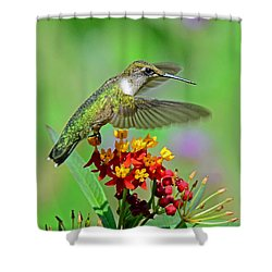 Shower Curtain featuring the photograph Nature's Majesty by Rodney Campbell